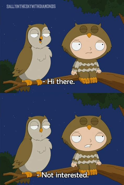 Stewie Gets Hit On By An Owl In a Tree On Family Guy