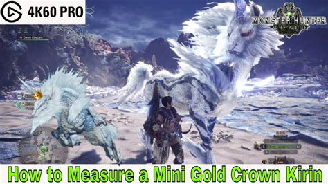 Monster Hunter: World - How to Measure a Mini Gold Crown