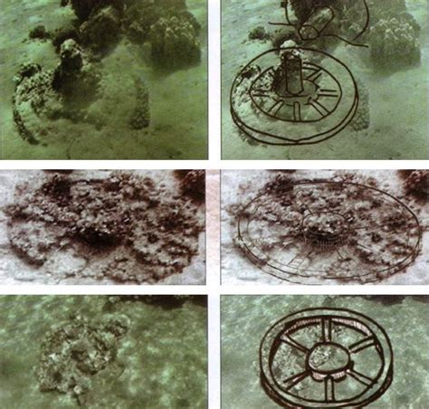 Egyptian chariot axles and chariot wheels found in the Red
