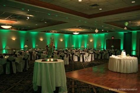 green wedding lights--I like the softer glow more than